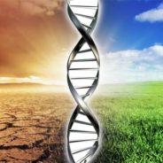 LE ORIGINI DELLA SALUTE E DELLE MALATTIE: FATTORI GENETICI ED AMBIENTALI a cura del Prof. Buonocore